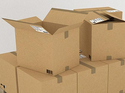 packing service provided by avus removals - photo